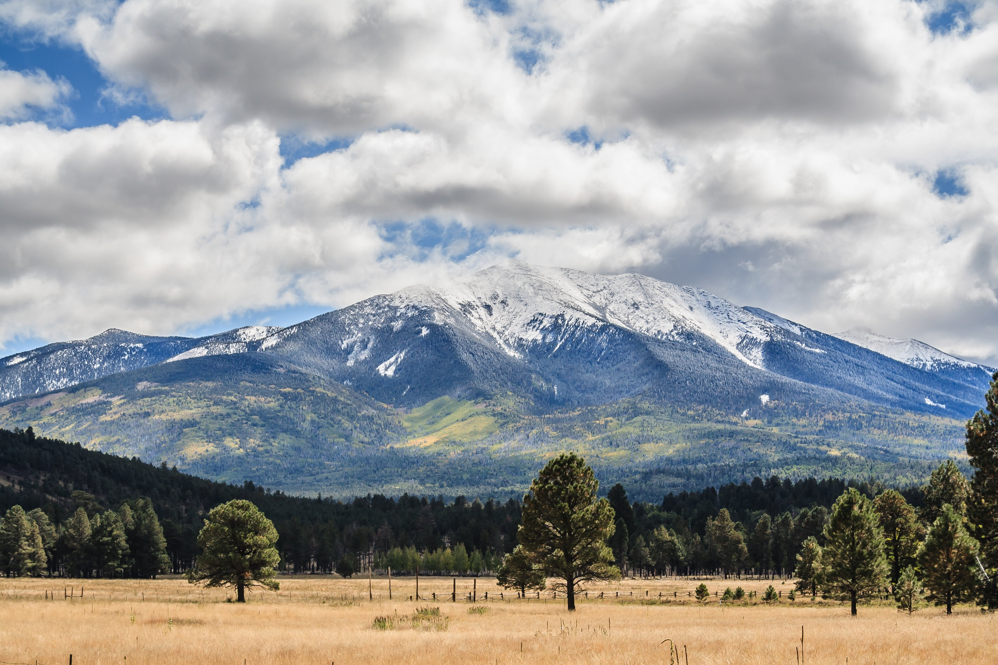 San Francisco Peaks Flagstaff, AZ | Justin Bemis Real Estate
