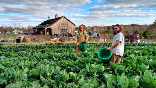 Farm-Based – Changing The Face Of Communities