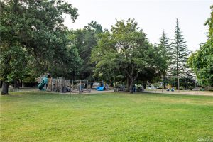 View Ridge Playfield