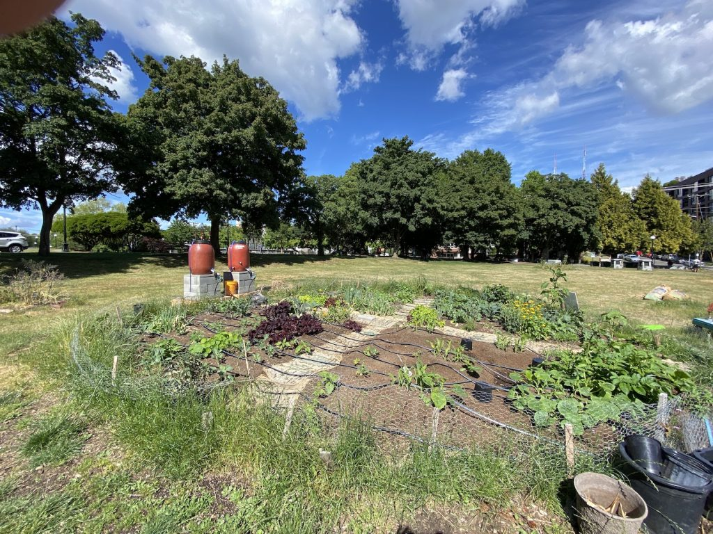 The layout of the Cal Anderson Park Garden includes two rain barrels