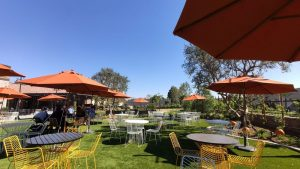 Outdoors - Haven City Market - Jonathan Perea Realtor