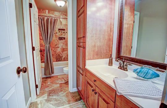 Taybrook Guest Bath