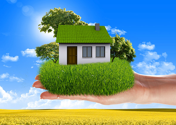 6 Top Trending Green Features To Consider When Remodeling Your Chicago Home