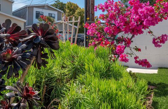1131 19th St. Hermosa Beach, CA 90254 1 (10)