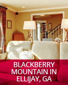 Blackberry Mountain Ellijay, GA Community Guide