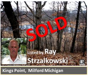 Recent Sale by Ray Strzalkowski