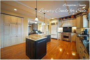 livingston county brighton condo for sale