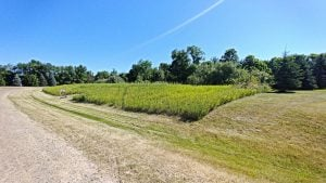 vacant land for sale in howell