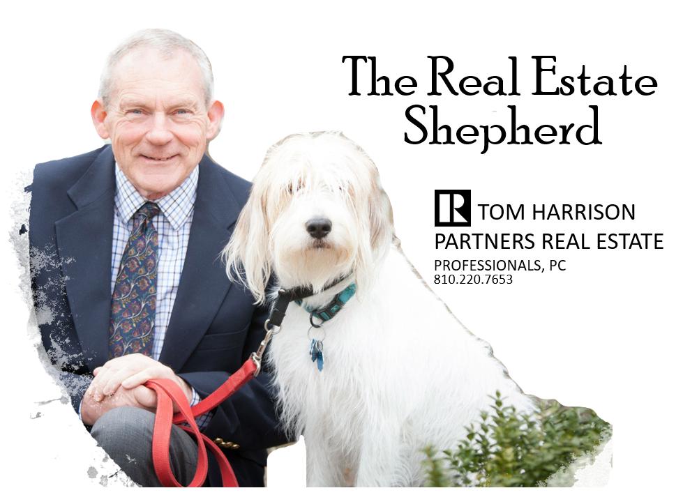 Tom Harrison, Real Estate Sheperd