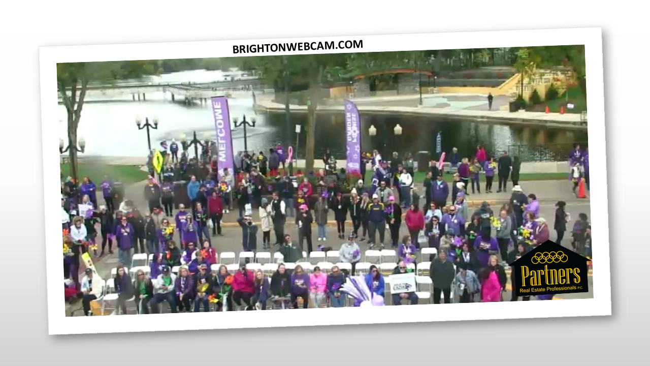 brighton webcam image