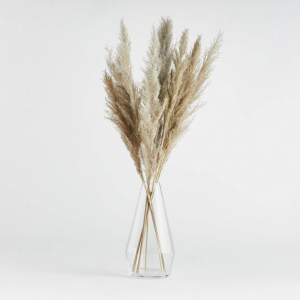 dried botanicals for fall