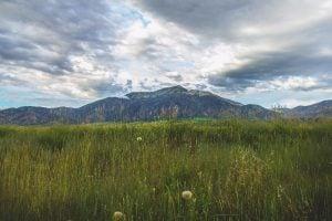 Swan Valley Idaho | Dakri Bernard Reality