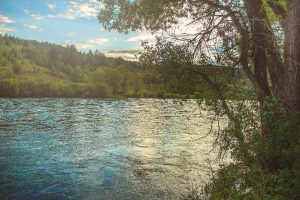 Swan Valley Idaho on The Snake River