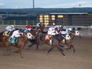 horse race idaho falls