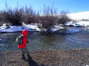 Fly Fisherman on the South Fork of the Snake River