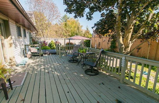 57 Wilmot Street, Newcastle - Patio