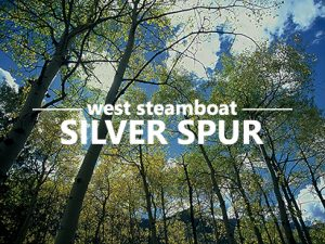 Click for homes in Silver Spur