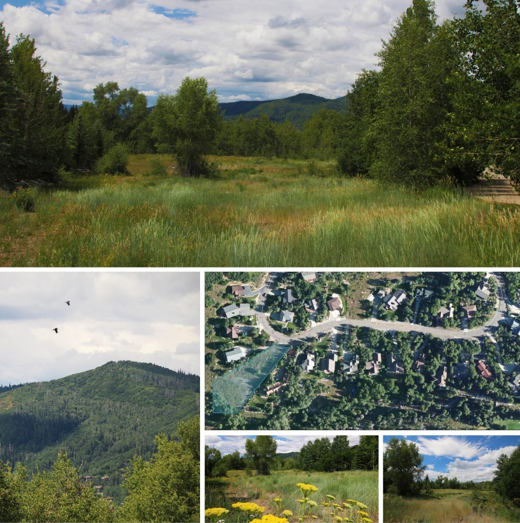 637 Meadowbrook Circle, Steamboat Springs, CO 80487