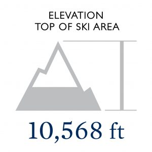 Elevation at The Top of The Ski Area: 10,568:
