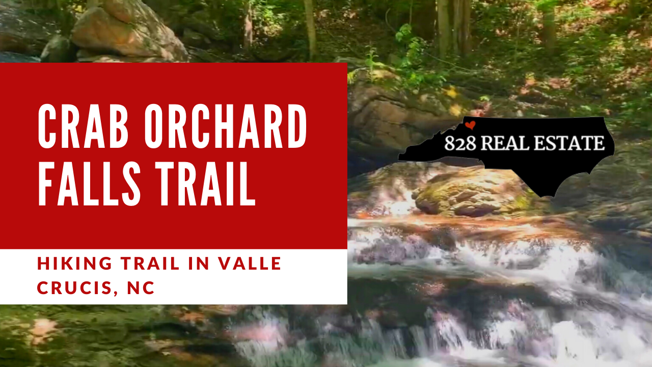 Crab Orchard Fall Trail Hiking Trail in Valle Crucis, NC.