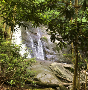 Waterfalls at Lower Pond Creek in Beech Mountain, NC