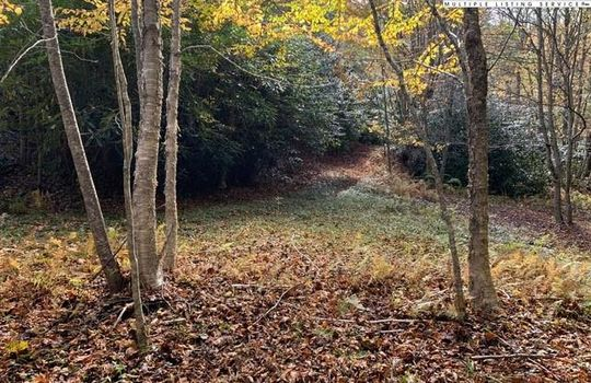 Lot 49 Owl's Brow Ridge, Blowing Rock, NC 28605
