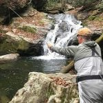 Man fly fishing in a trout creek by a waterfall with High Country Guide Service in Boone, North Carolina.