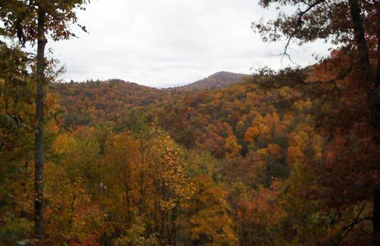 Fall-view_2009
