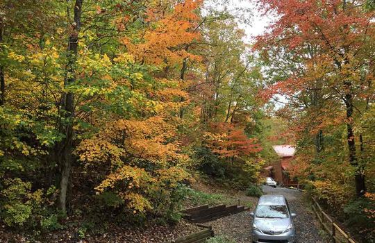 Fall-view-over-driveway