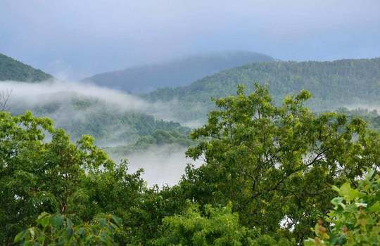 Fog-in-the-hills_2012