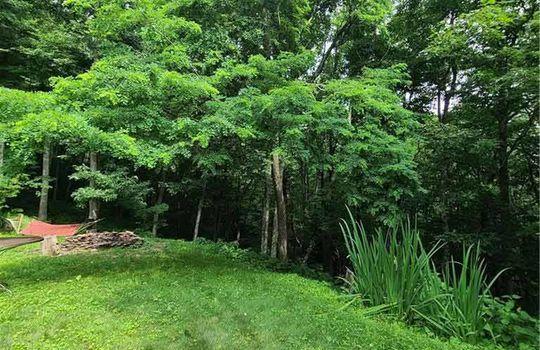 yardandforest
