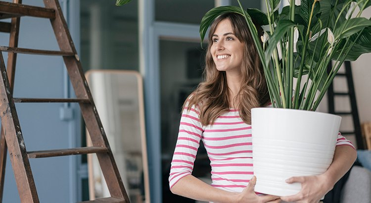 Woman holding potted plant in her new home