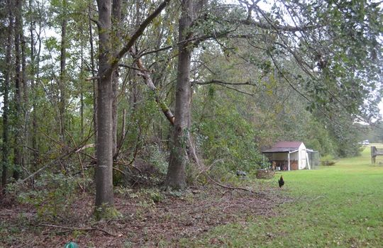 6456 HWY 52 S, Cheraw, Chesterfield County, 29520, SC, Home for Sale