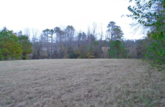 McMilian Rd, Cheraw, Chesterfield County, SC, 29520, Lot for Sale 2
