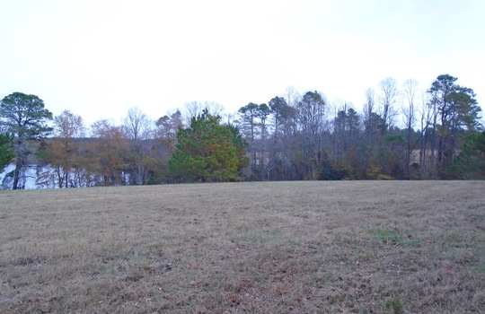 McMilian Rd, Cheraw, Chesterfield County, SC, 29520, Lot for Sale 3