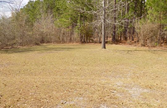 1232 LE Byrd Road Patrick SC 29584 Country Home and Acreage For Sale (16)