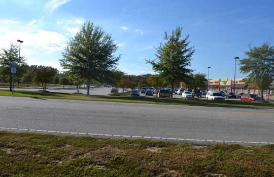 Chesterfield Highway, Cheraw, Chesterfield County, SC, 29520, Commercial Acerage for sale 14