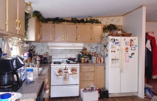 675 Bear Creek Road, Chesterfield, Chesterfield County, 29709, South Caroline, Home For Sale 2