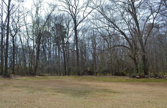 480 Four Mile Loop Road, Cheraw, Chesterfield County, 29520, South Carolina, Home and Land For sale 15