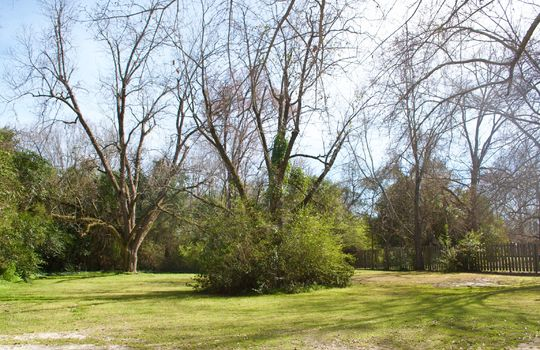 Market Street, Cheraw, Chesterfield County, 29520, South Carolina, Home for Sale 17