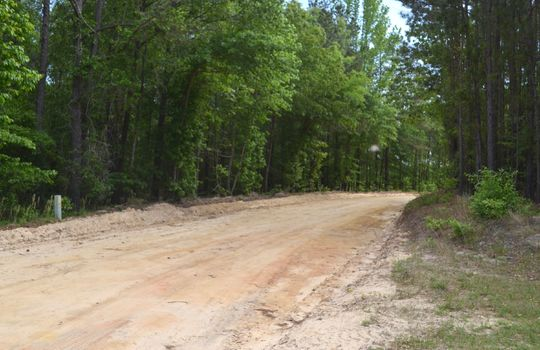 Davis White Lane, Chesterfield, Chesterfield County, SC, 29709, Home and land for sale 12