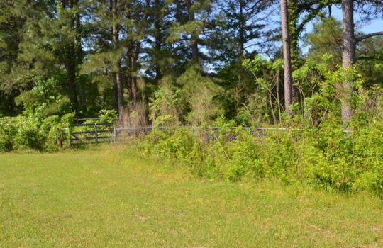 Davis White Lane, Chesterfield, Chesterfield County, SC, 29709, Home and land for sale 9