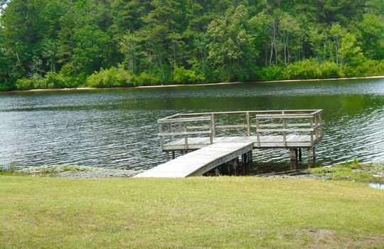 resized 152 Ski Cove Lane, Hartsville, Chesterfield County, South Carolina, 29550, Home For Sale 1