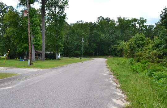 Roberts Road, Cheraw, Chesterfield County, 29520, SC, Land for Sale 1