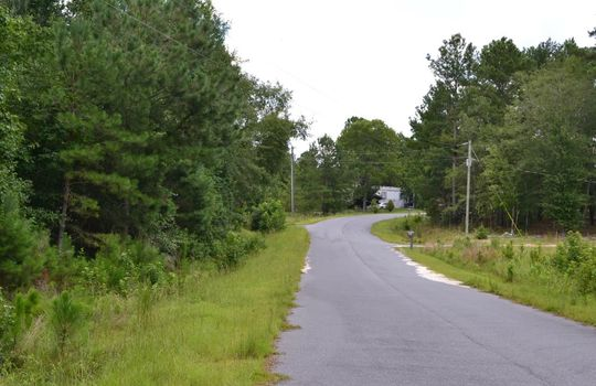 Singletree Road, Cheraw, Cheserfield County, SC 29520, Land for Sale