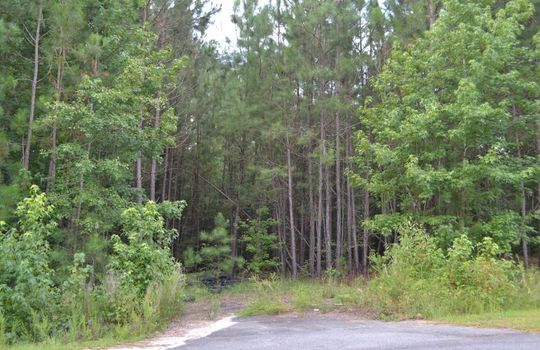 Singletree Road, Cheraw, Chesterfield County, 29520, SC, Land for Sale 2