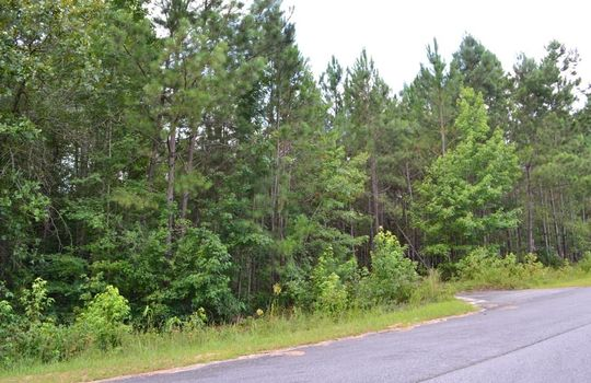 Singletree Road, Cheraw, Chesterfield County, 29520, SC, Land for Sale 3