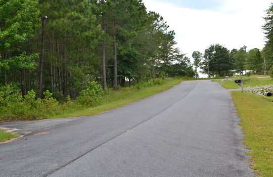Singletree Road, Cheraw, Chesterfield County, 29520, SC, Land for Sale