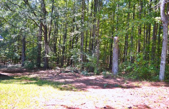 137 2nd Street, Mt. Crighan, Chesterfield County, 29727, SC, Home For Sale 1