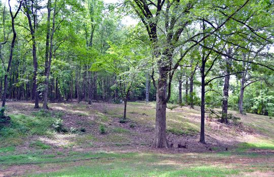 2246 Hwy 145 North Chesterfield SC 29709 Country Home For Sale (6)